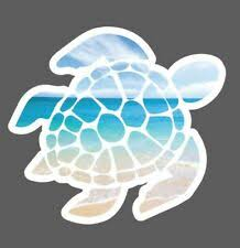 Turtle Decal For Sale In Stock Ebay