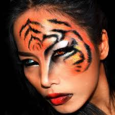 makeup cats 50 amazing images for the