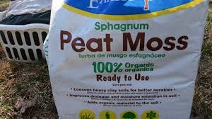 why is peat moss important in vegetable