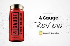 4 gauge review 2020 does it work