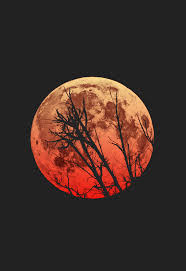 by Jeremiah Probodanu nel 2019 | Bella luna, Loghi natura e ...