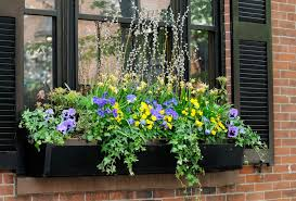 Planter Boxes Melbourne Wall Hanging Balcony Wooden Planters