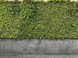 How To Install Artificial Hedges Megagrass
