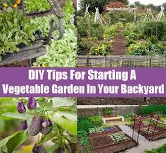 diy backyard vegetable garden outdoor