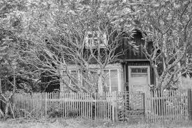 Free Images Tree Nature Winter Fence Black And White Wood House Frost Home Overgrown Broken Old Building Trees Dilapidated Lapsed Run Down Monochrome Photography Ratty Outdoor Structure 3657x2441 602098