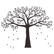 Anber Large Family Photo Tree Wall Decal Buy Online In Guernsey At Desertcart