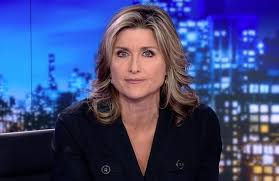 Ashleigh Banfield Fires Back at Aziz Ansari Article Author Who Insulted Her  Looks (Video)
