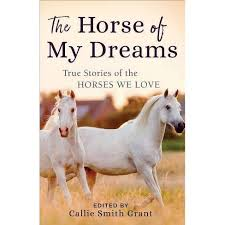 The Horse Of My Dreams - By Callie Smith Grant (Paperback) : Target