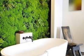 living walls the indoor vertical garden