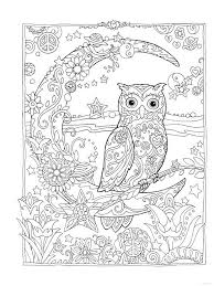 Owl Owls Crescent Moon Flowers Peace Space Coloring Pages