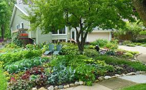 town bans front yard vegetable gardens