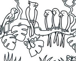 Knutseltips Kleurplaten Dieren Kleurplaten Huisdier Knutselen
