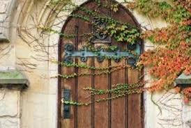 The Best Ivy For Covering A Wire Fence Home Guides Sf Gate