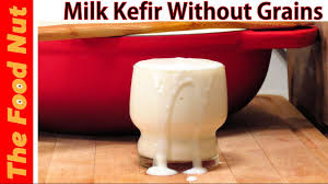 how to make milk kefir without grains