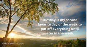 tuesday good morning quotes wishes and messages brainy status