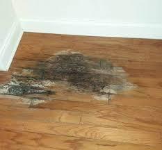 repair hardwood floors ktw hardwood