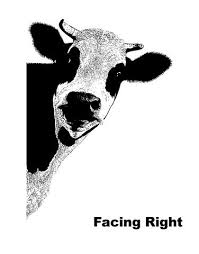 Peeking Cow Wall Decal Sticker For Your Kitchen 5476 Stickerbrand