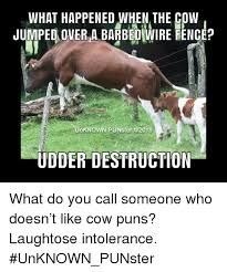 What Happened When The Cow Jumped Over A Barbed Wire Fence Unknown Punster Udder Destruction What Do You Call Someone Who Doesn T Like Cow Puns Laughtose Intolerance Unknown Punster Meme On Me Me
