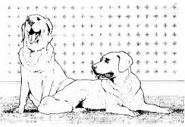 Kleurplaat Dieren Hond Kleurplaat 2 Hondjes