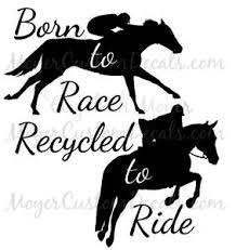 Ottb Off Track Thoroughbred Tb Jumping Horse Decal Sticker You Choose Color Ebay