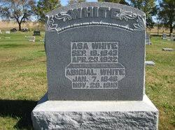 Abigail Howell White (1846-1910) - Find A Grave Memorial