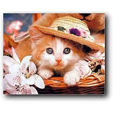 Amazon Com Kitten In A Hat Cute Cat Animal Kids Room Wall Decor Art Print Poster 16x20 Cat Posters For Kids Posters Prints