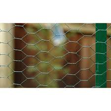 Pvc Wire Netting 1000mm X 10m 50mm