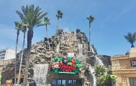 rainforest cafe and river