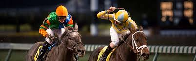 2020 Gulfstream Park Oaks Contenders & Odds | OFF TRACK BETTING