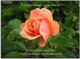 images of nature and flowers quotes top collection of