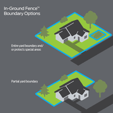 In Ground Fence System Premier Pet