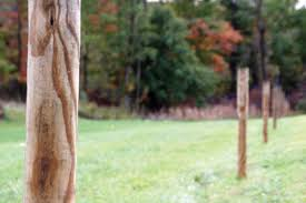 A Post About Posts Electric Fence Post Tips