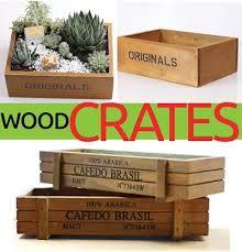 qoo10 wooden box tools gardening