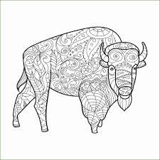 Kleurplaat Bison