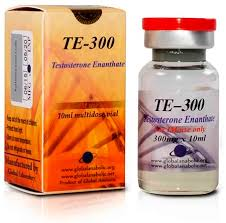 te 300 testosterone enant 300mg