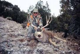 Mule Deer Rifle And Muzzleloader New Mexico United States Bookyourhunt Com