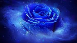 cool blue wallpapers top free cool