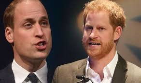 Prince William's verdict on Prince Harry laid bare amid rift claims: 'He is  a free spirit' | Royal | News | Express.co.uk