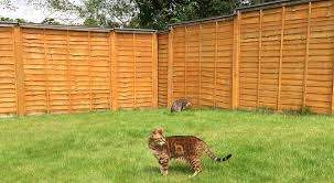 Oscillot Cat Fence Dog Fence Cat Proofing Cat Fence