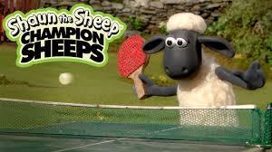 Video - Bò và cừu - Những Chú Cừu Thông Minh [Phần 3]
