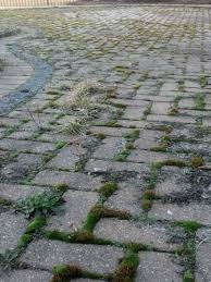 brick paver cleaning services