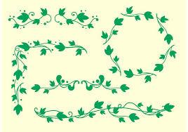 simple ivy vine vectors free
