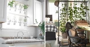 indoor garden ideas for small spaces