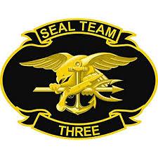 Amazon Com Us Navy United States Navy Seal Team Three Military Veteran Served Window Bumper Sticker Vinyl Decal 3 8 Automotive