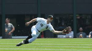 Watch: White Sox's Adam Engel robs home run with great catch ...