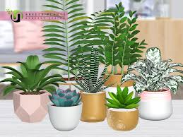 nynaevedesign s breeze plants