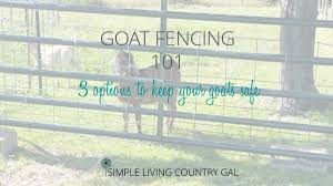 Goat Fencing 101 Everything You Need To Know Simple Living Country Gal