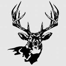 Truck Window Deer Decal Hunting Buck Archery Sticker For Hoyt Browning Pse Ebay