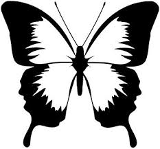 Amazon Com Ranger Products Butterfly Car Decal Window Sticker Insect Bug White Color Decal Die Cut Decal Bumper Sticker For Windows Cars Trucks Laptops Etc Automotive