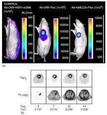 biocal imaging technologies